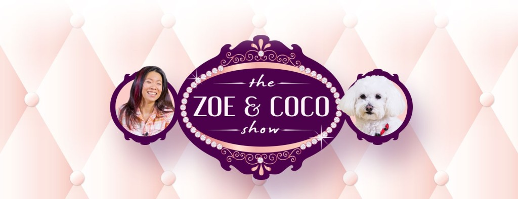The Zoe and Coco Yoga Show